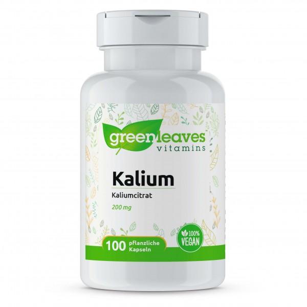 Kaliumcitrat 200 mg, 100 Kapseln
