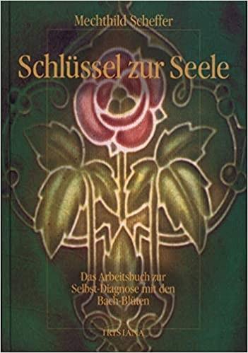Schlüssel zur Seele von Mechthild Scheffer